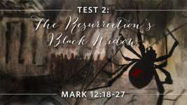Test 2: The Resurrection's Black Widow