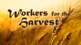 WORKERS FOR THE HARVEST