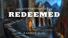 The Stewardship of the Redeemed
