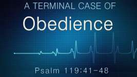 A TERMINAL CASE OF OBEDIENCE