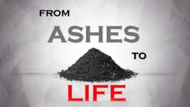 FROM ASHES TO LIFE