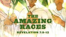 The Amazing Races