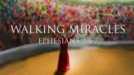 Walking Miracles