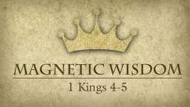 Magnetic Wisdom