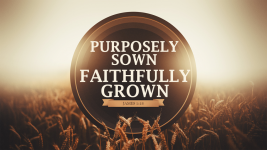 Purposely Sown, Faithfully Grown