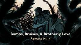 Bumps, Bruises, and Brotherly Love
