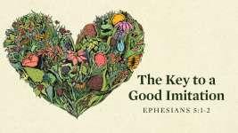 The Key to a Good Imitation