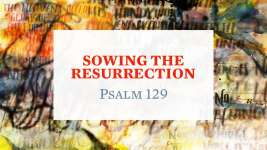 Sowing the Resurrection